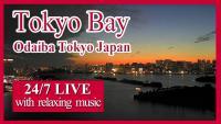 Tokio Bay open webcam